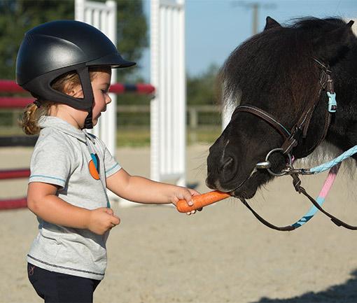 Jak vybrat jezdecký tábor