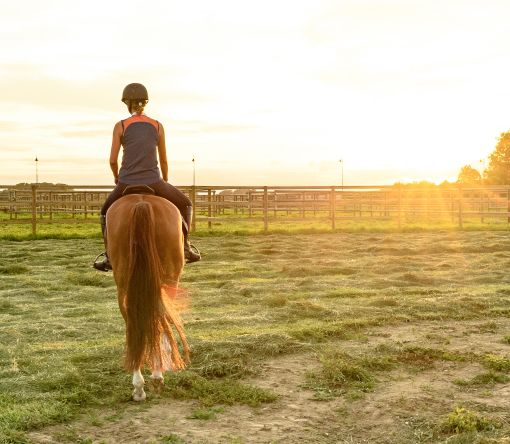 Pohodlná jízda na koni