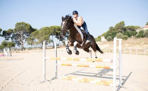 Kůň ve skoku