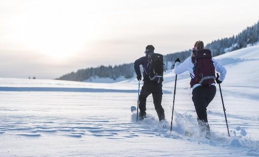 Back country běh na lyžích