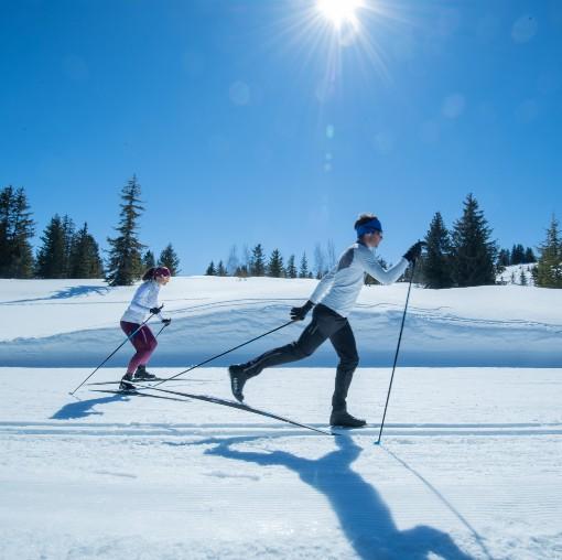 Klasická i bruslařská technika běhu na lyžích