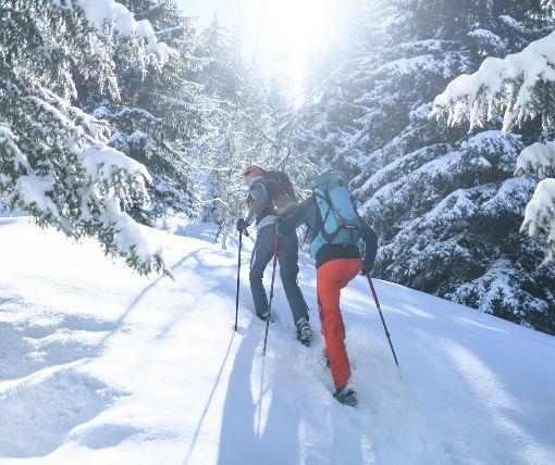 Turistika se sněžnicemi