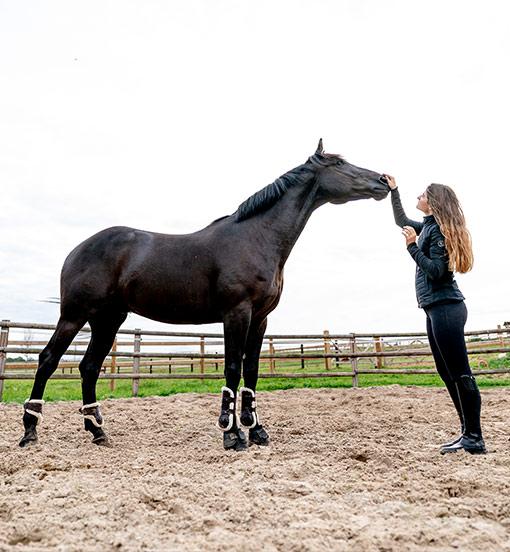 pochvala koně