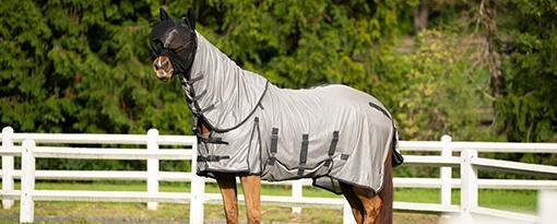 síťová deka chránící koně proti hmyzu