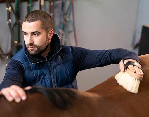 jezdec pečující o koně