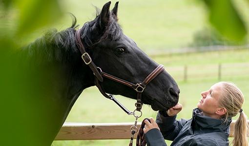 jezdkyně s koněm