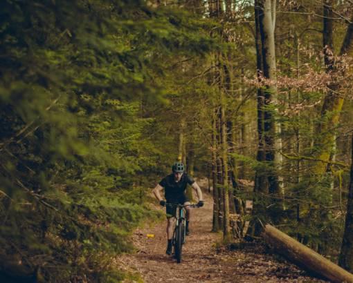 cyklovyjížďka v lese